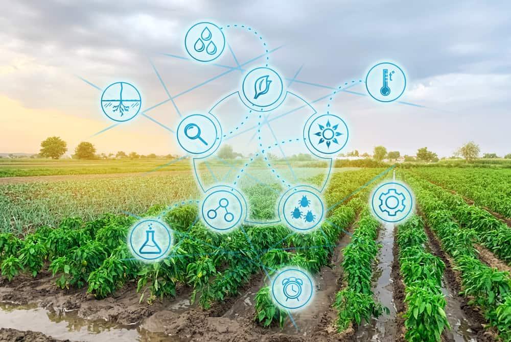 Les 10 start-up qui dessinent l'agriculture de demain à suivre en 2021